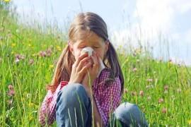 Аллергия на цветы, симптомы, профилактика и лечение