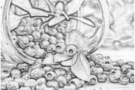 Лекарственная ягода черника