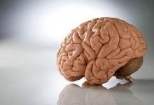 Опухоли головного и спинного мозга
