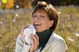 С аллергией помогают справиться сельдерей и чеснок