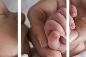 Первый год жизни малыша