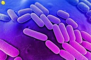 Пневмония - причины, симптомы, лечение и профилактика