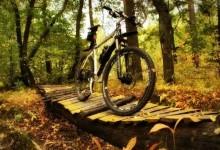 Занятия спортом – активный отдых для души и тела