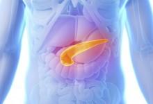 Поджелудочная железа и её функции