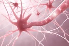 Эпилепсия диагностика