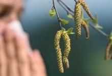 Причины развития аллергий