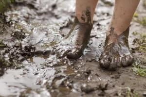 Лечебные грязи и косметическая глина