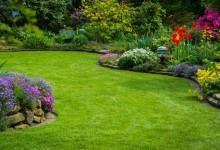 Уход за садом, важные аспекты