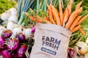Причины популярности органических продуктов