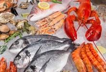 Где купить рыбу и морепродукты