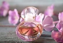 Интересные факты о парфюмерных ароматах